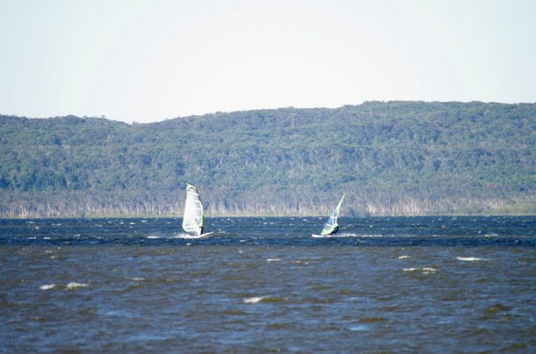Sailboarders on Lake Cootharaba
